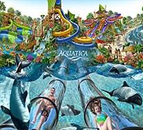 Disney Orlando Water Park