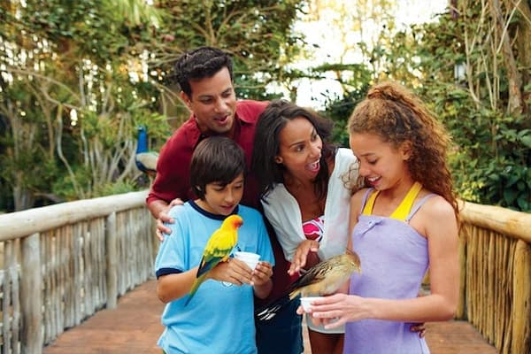 disneyorlandotickets.com-disney-orlando-tickets-resort-park