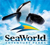 Disney Orlando SeaWorld