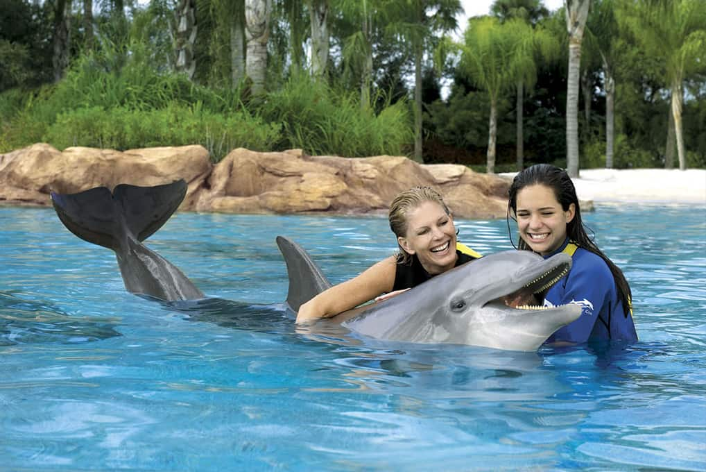 SeaWorld Discovery Cove